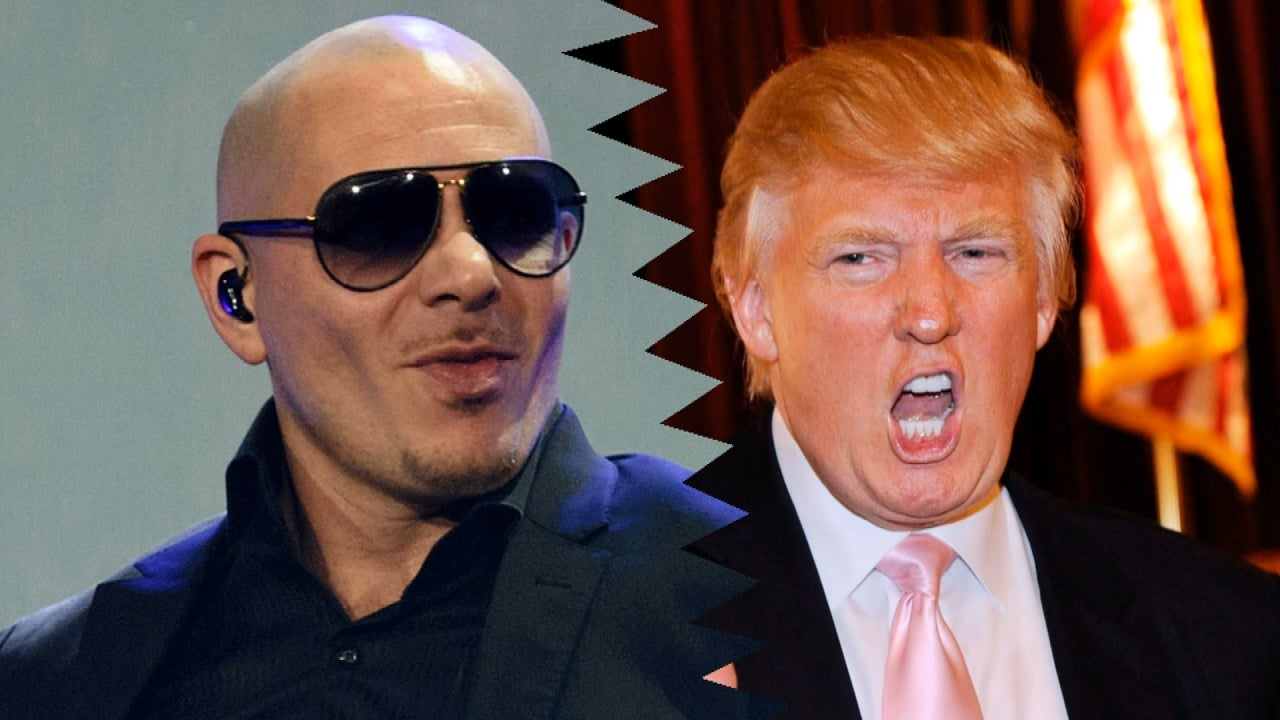 Pitbull wont stay at donald trump hotels anymore tells him to pitbull wont stay at donald trump hotels anymore tells him to watch out for el chapo entertainment tonight voltagebd Image collections