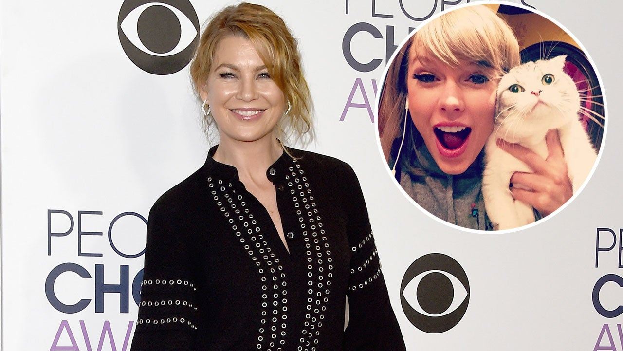 Ellen Pompeo Is Not In Taylor Swift S Girl Squad Says It Ll Be Awkward To Meet Cat Meredith Grey Entertainment Tonight