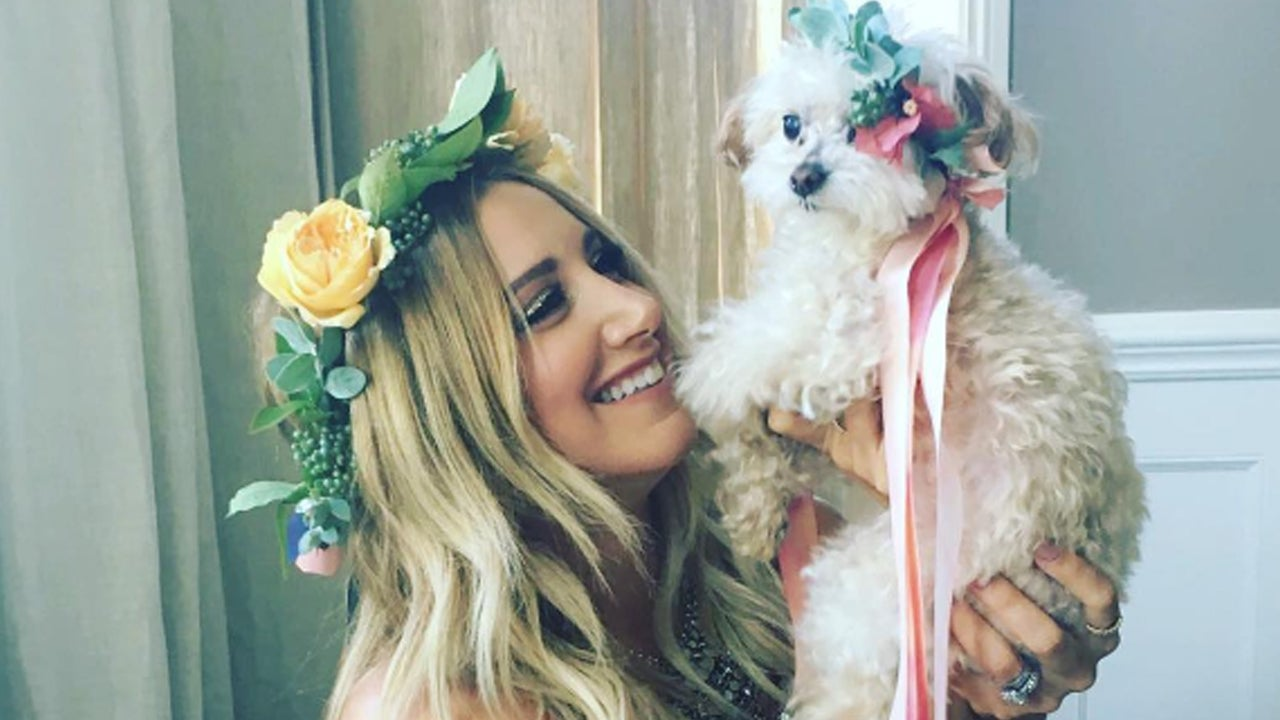 Selfie Ashley Tisdale naked (58 photo), Pussy, Fappening, Instagram, cleavage 2020