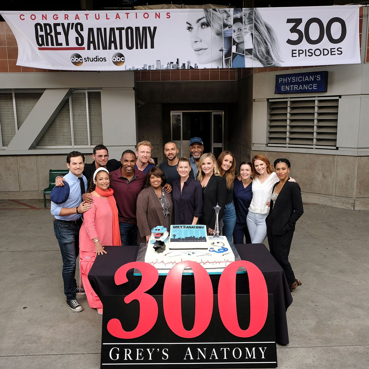 Grey's Anatomy 300th episode