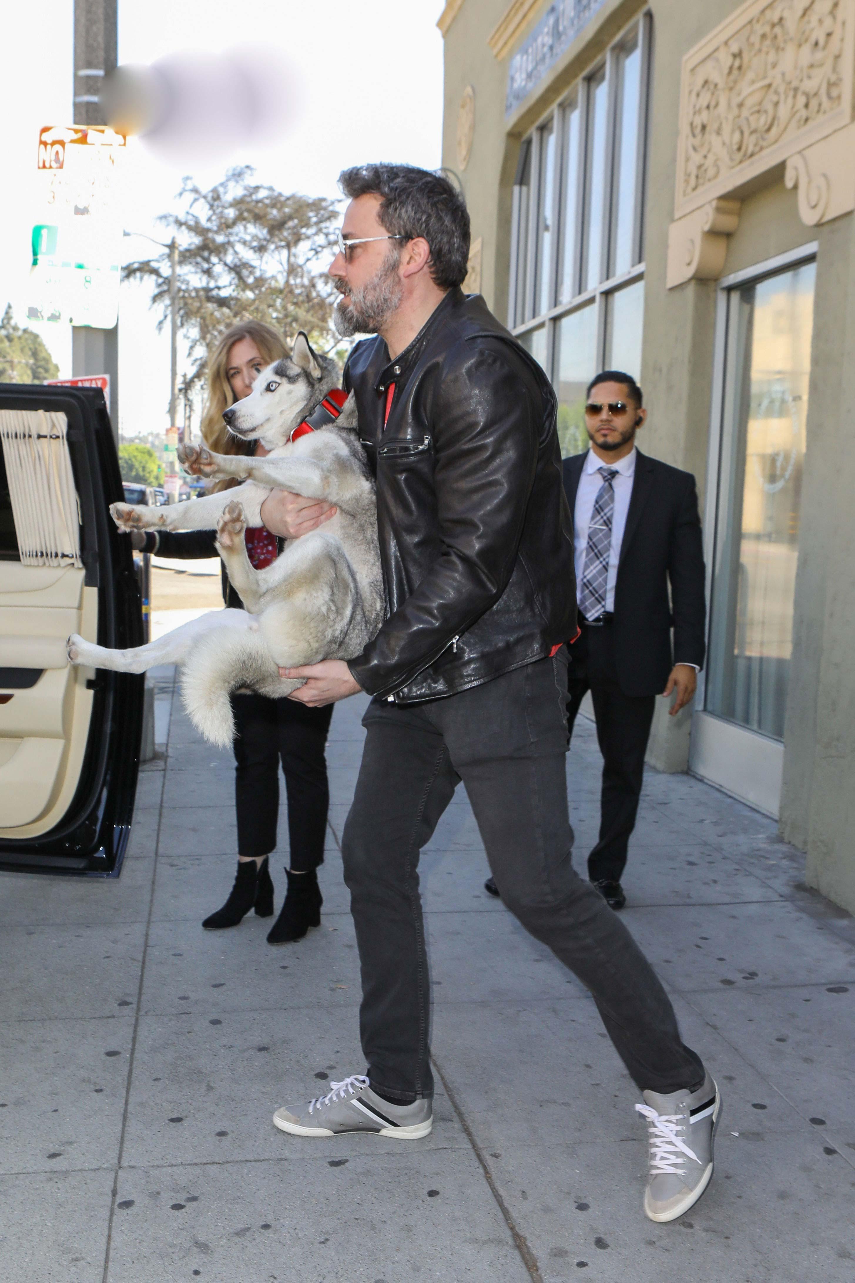 Ben Affleck With Pet Husky