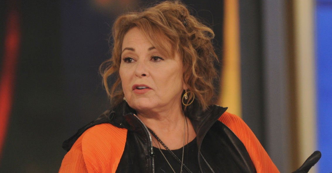 Roseanne Barr Says She's Been Offered 'So Many' Projects Since Being Fired From 'Roseanne' Reboot