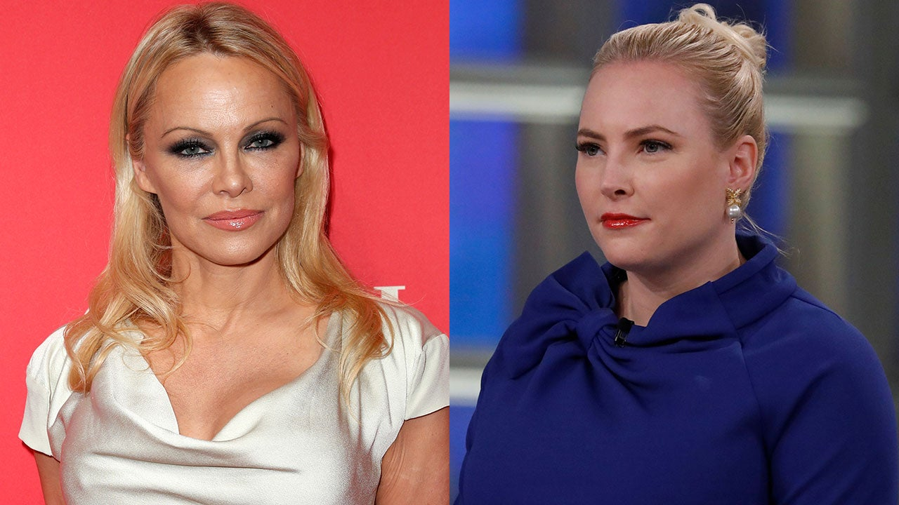 Meghan McCain and Pamela Anderson Feud Over Politics on 'The View'