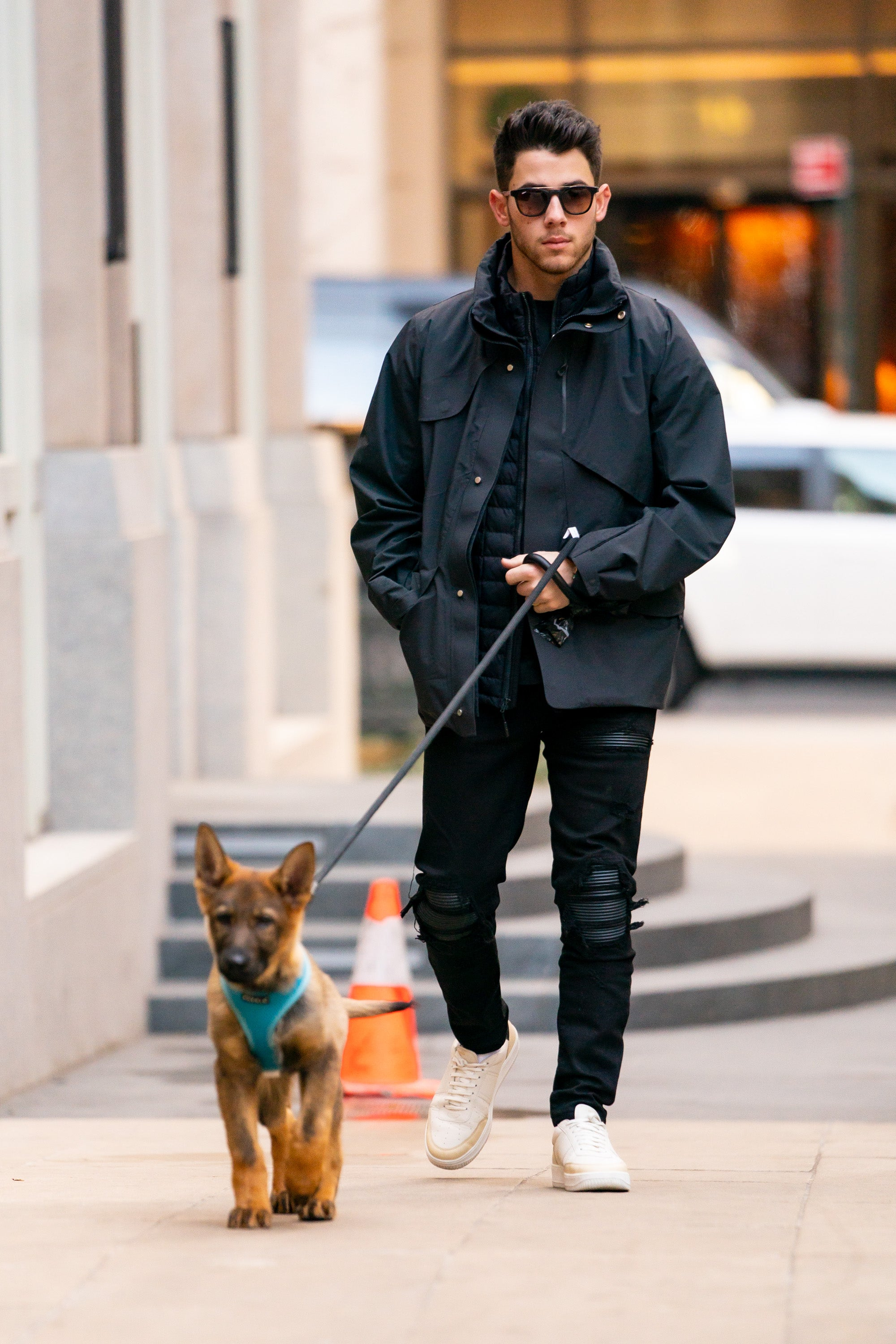 Nick Jonas And His New Dog Gino Are The Cutest Duo While Out In Nyc Entertainment Tonight