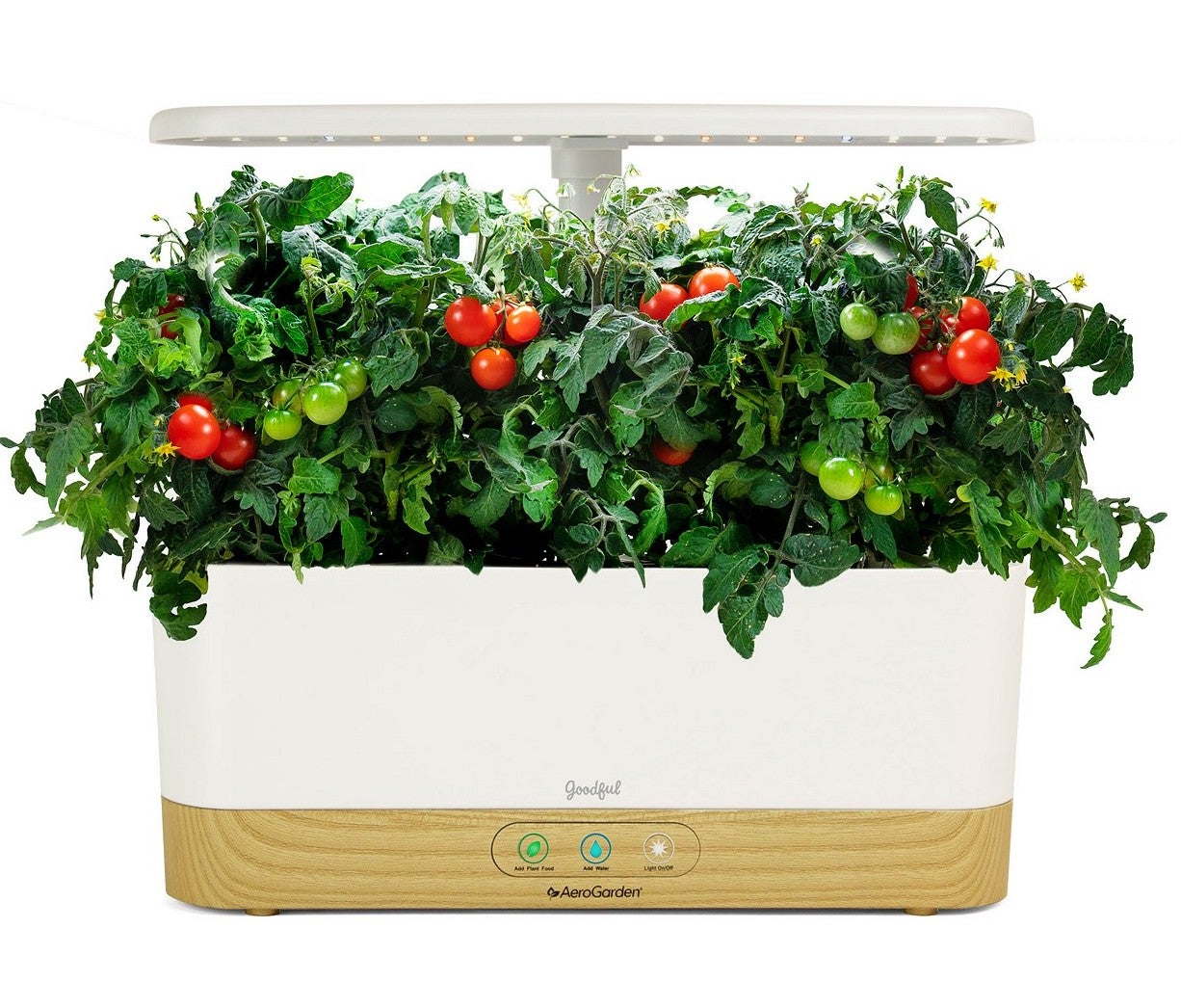 Goodful by AeroGarden Harvest Slim Gourmet Herbs Seed Pod Kit