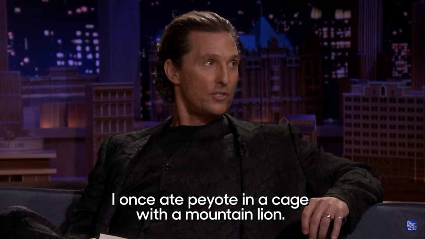 Matthew McConaughey Once Did Peyote With a Mountain Lion
