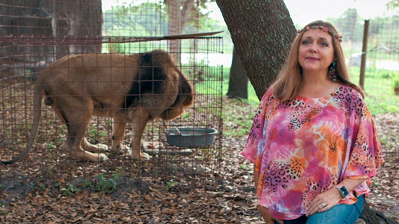 Tiger King' Star Carole Baskin Slams Netflix Series Over Portrayal ...
