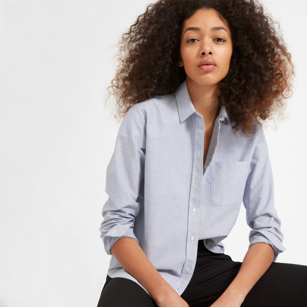 Everlane The Japanese Oxford Shir