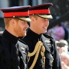 Prince Harry, Prince William
