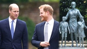 Prince William Is Still 'Very Bitter' and 'Very Hurt' by Brother Prince Harry, Royal Expert Says