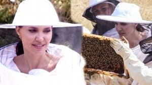 Angelina Jolie Wears Beekeeper Uniform to Celebrate Graduates of Her 'Women for Bees' Program