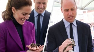 Watch Prince William and Kate Middleton Hold Snakes and Spiders