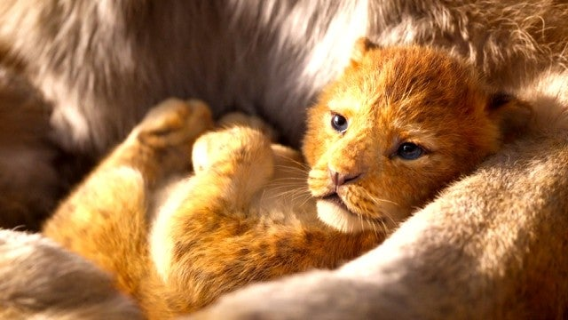 'The Lion King' Trailer: Get a First Look at the 'Live-Action' Remake!
