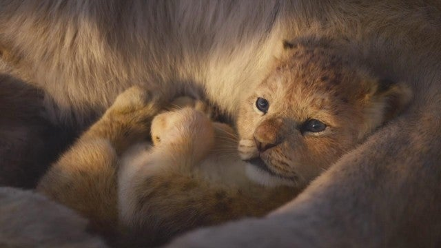 'The Lion King': New Live-Action Trailer Debuts