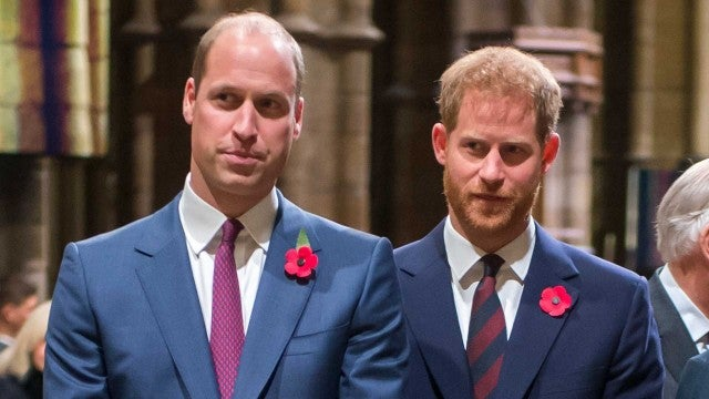 How Prince Harry's Relationship With Prince William WAS on the Mend