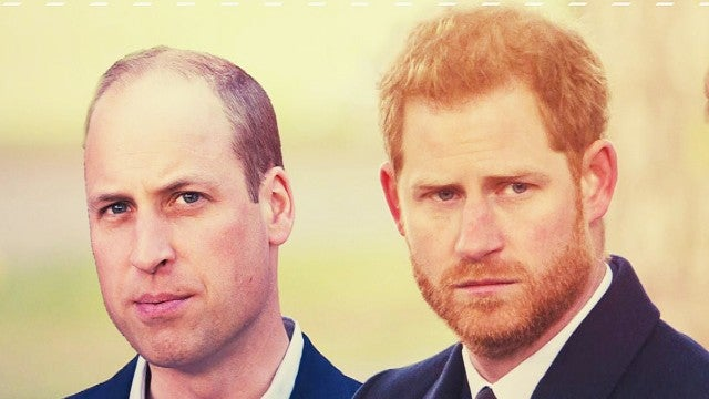 'Battle of Brothers' Book Details the Royal Family Fallout Between Prince Harry and Prince William