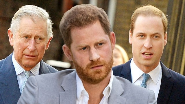 Prince Harry Has Spoken With Prince Charles and Prince William Since Explosive Oprah Interview