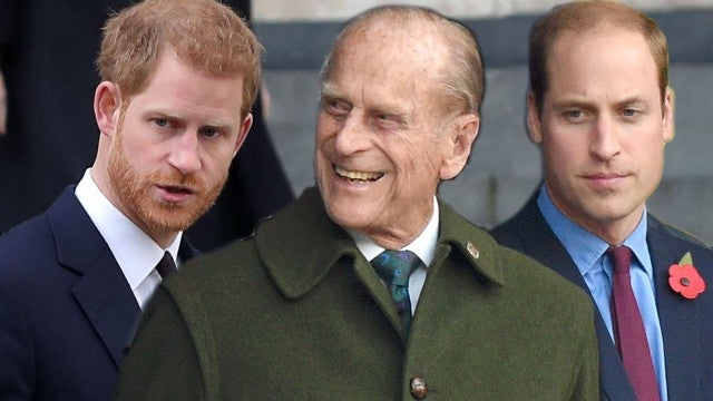 Princes Harry and William Not Standing Together at Philip's Funeral