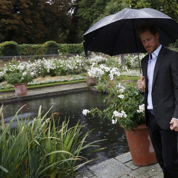 Prince Harry at White Gardens