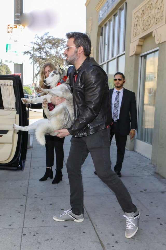 Ben Affleck With Pet Husky