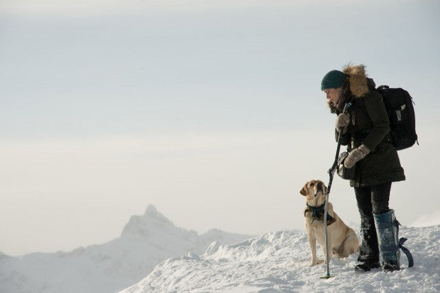 Kate Winslet in 'The Mountain Between Us'