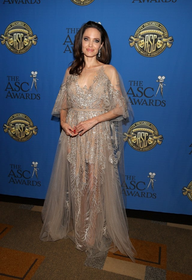 Angelina Jolie Stuns in Glittery Gown at American Society Of ...