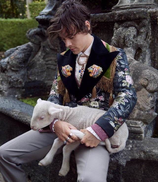 Harry Styles Gucci campaign with lamb