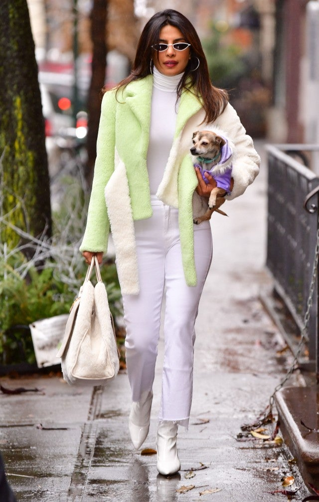 Priyanka Chopra and her dog in NYC