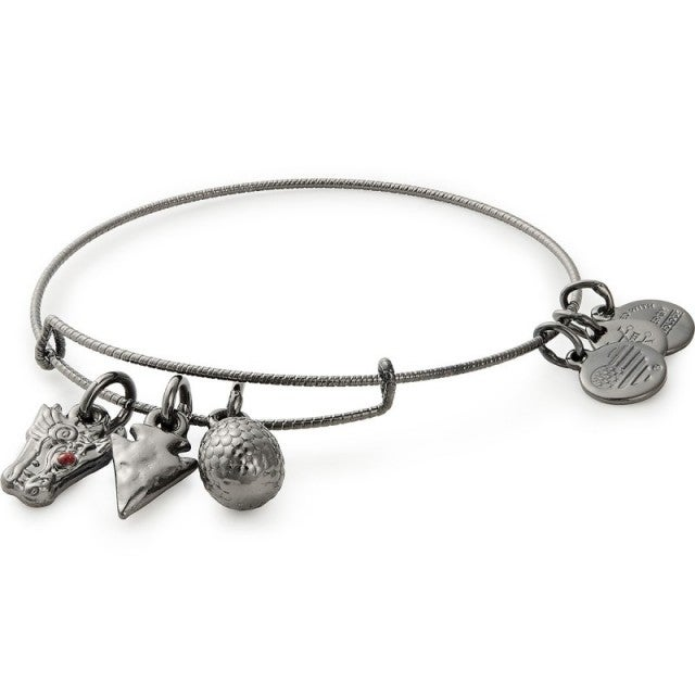 Alex and Ani Game of Thrones Targaryen bangle
