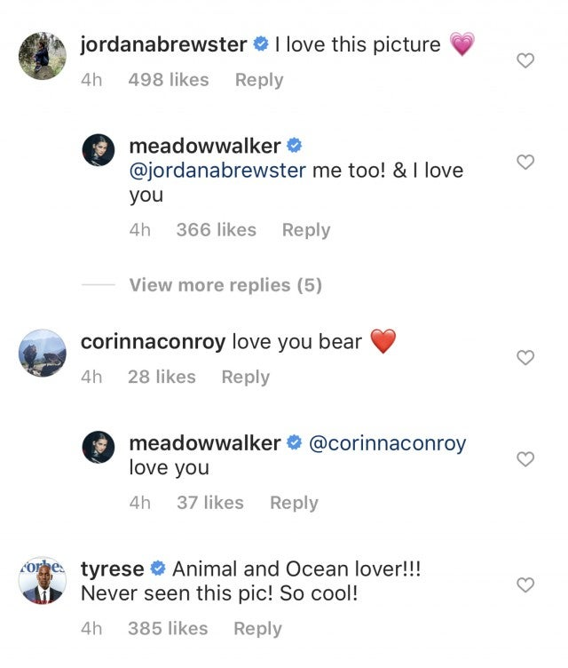 Jordana Brewster Tyrese Comment Meadow Walker
