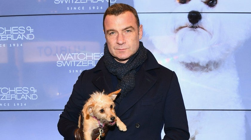 Liev Schreiber and dog Woody at NYC event