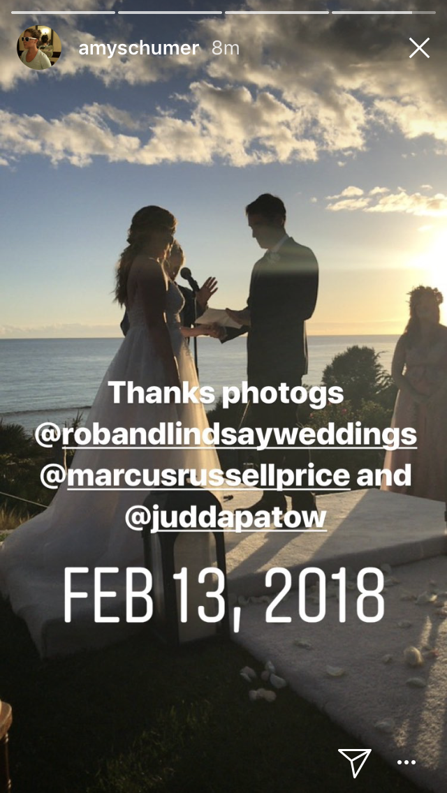 Amy Schumer Instagram story wedding