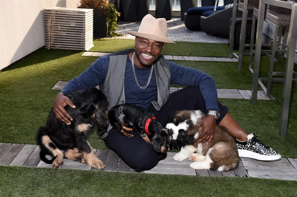 Taye Diggs and dogs