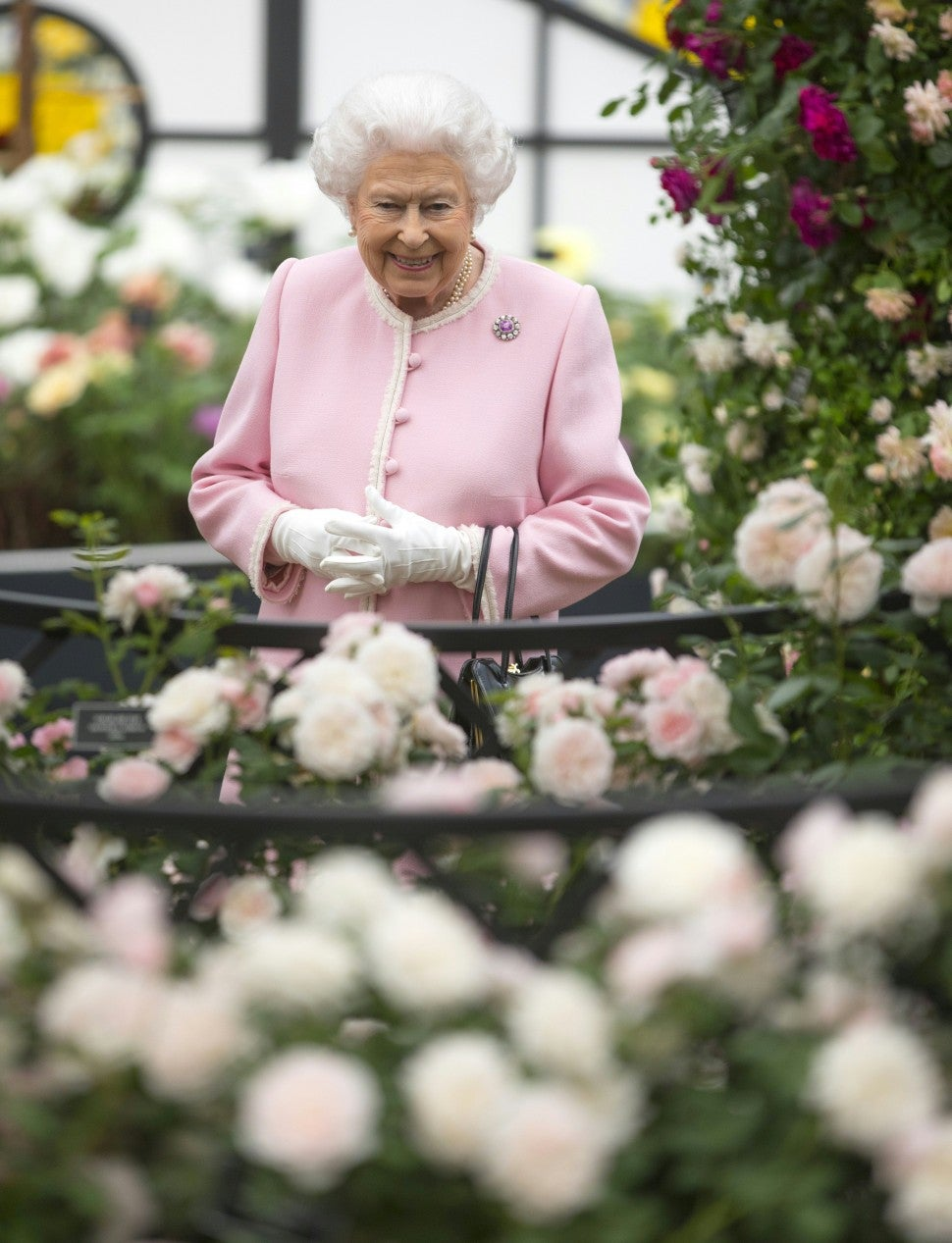 Queen Elizabeth at Chelsea Flower Show