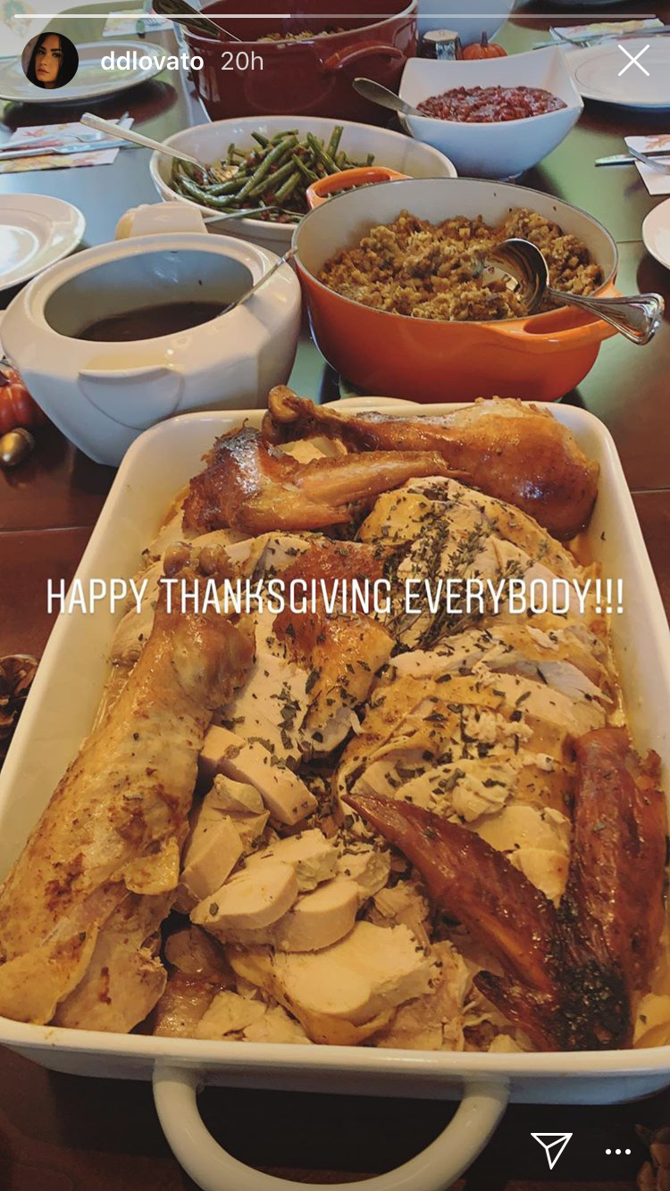 demi_lovato_thanksgiving.png