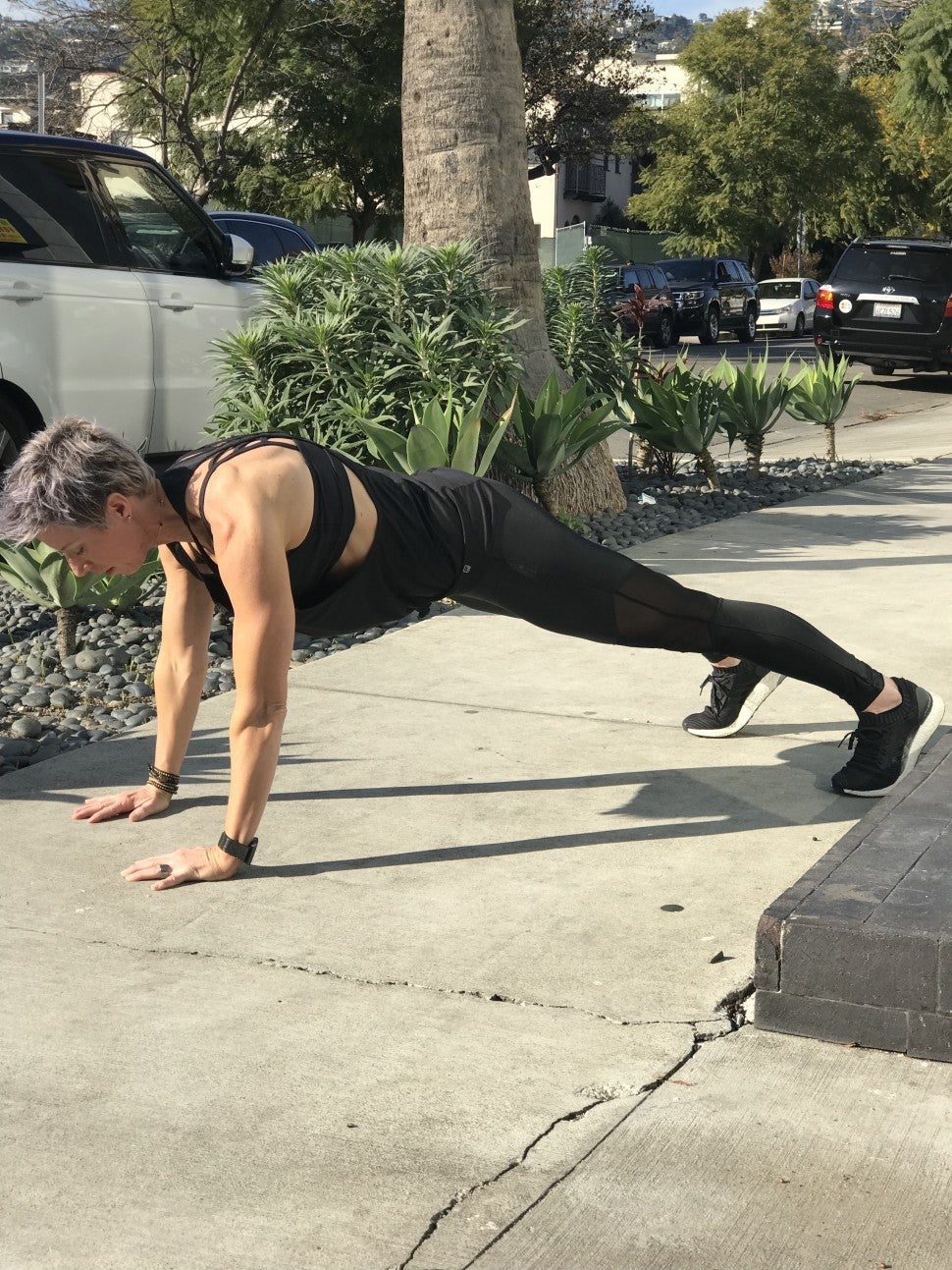 Erin Oprea Plank Chest 1