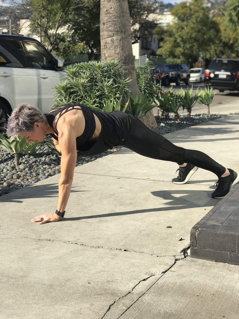 Erin Oprea Plank Chest 2