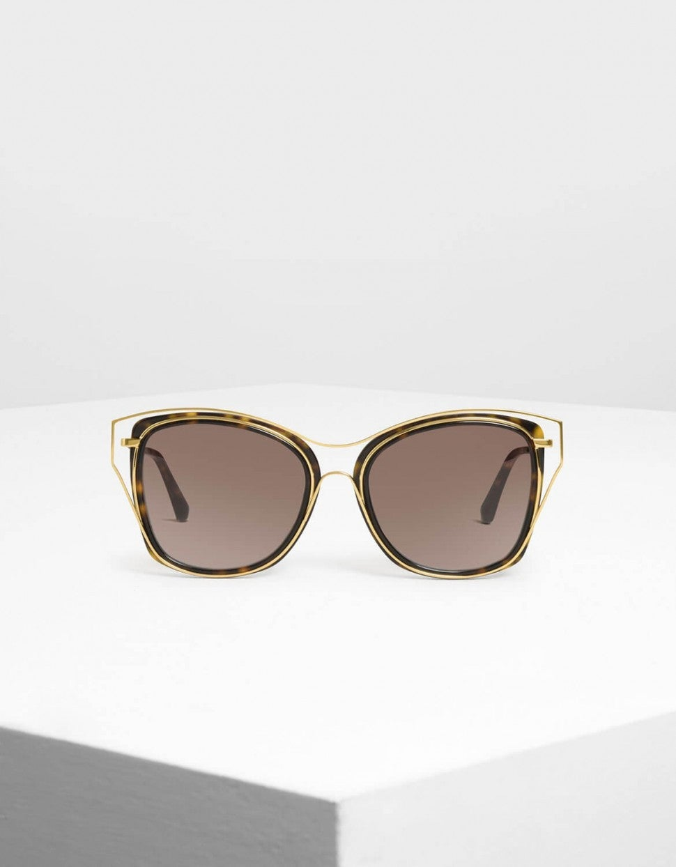 Charles & Keith double frame sunglasses
