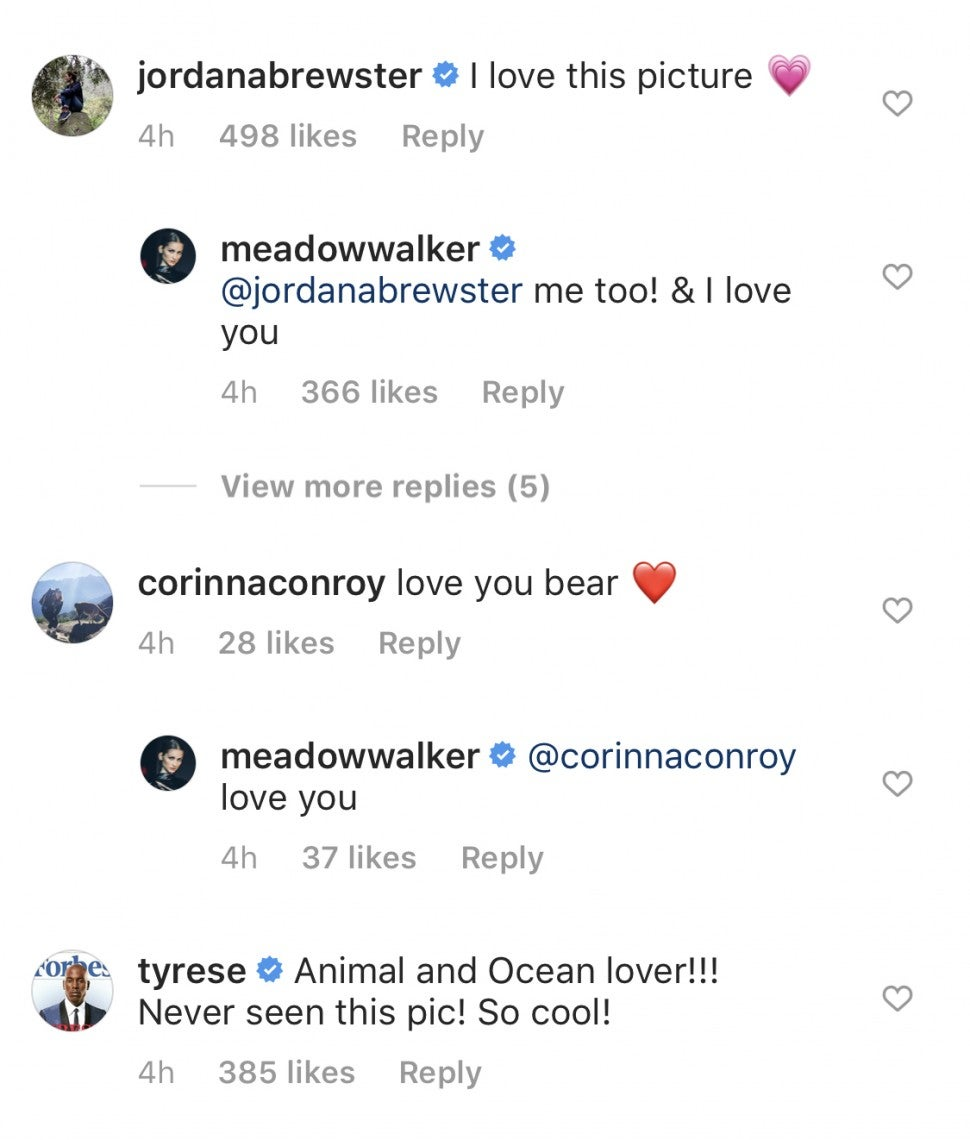 Jordana Brewster Tyrese Comment Meadow Walker