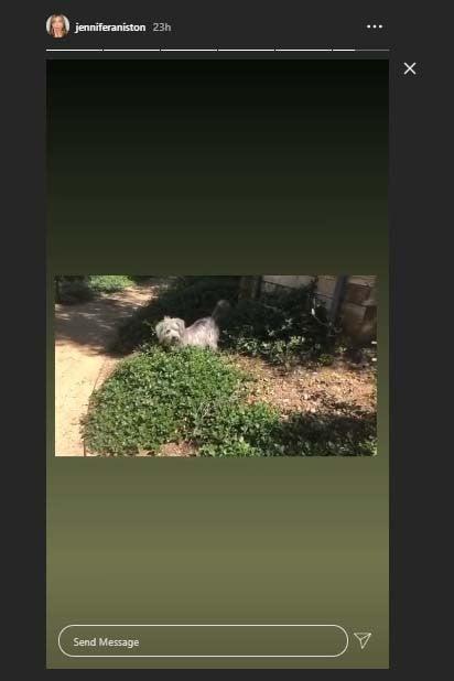 Jennifer Aniston dog Instagram