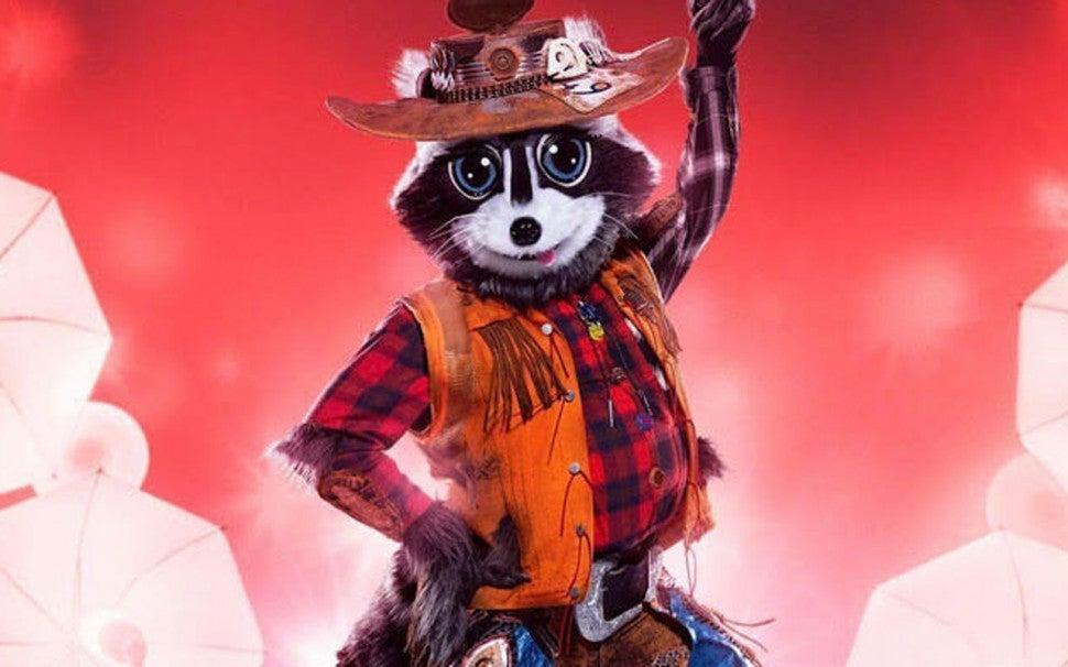 raccoon_ms_1280.jpg?itok=EzBsduEa