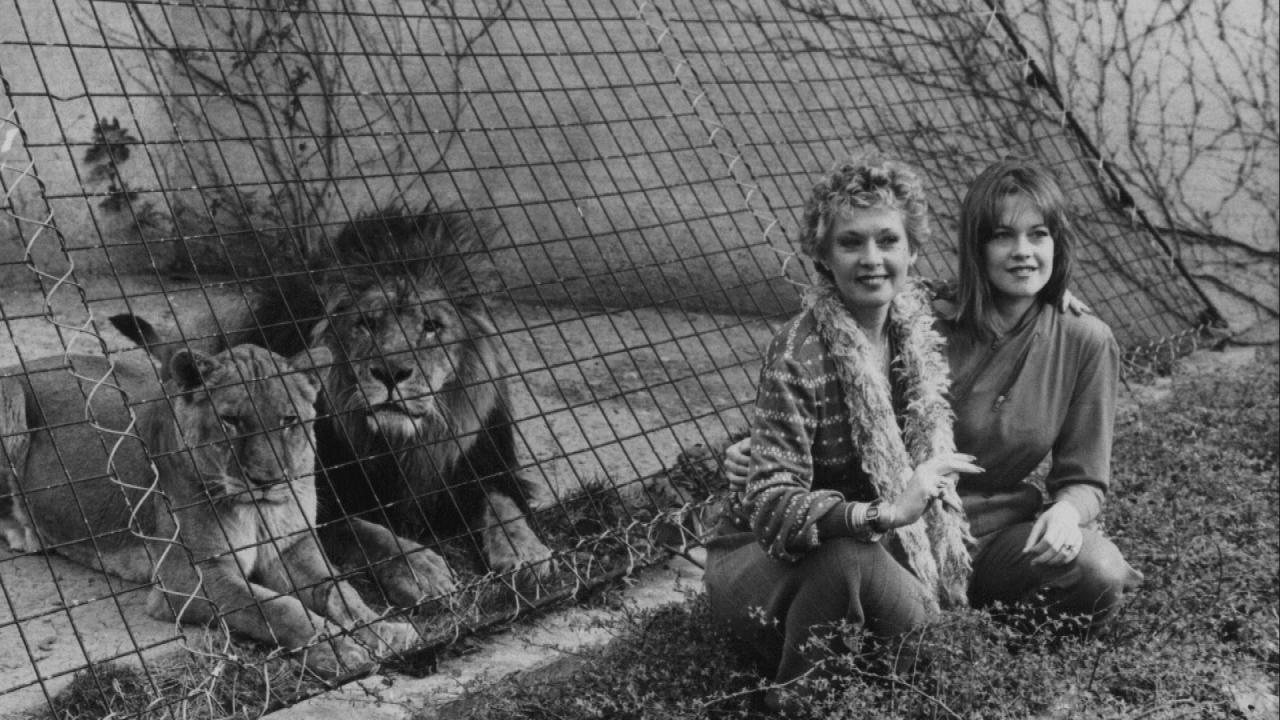 Melanie Griffith S Wild Childhood With Lions
