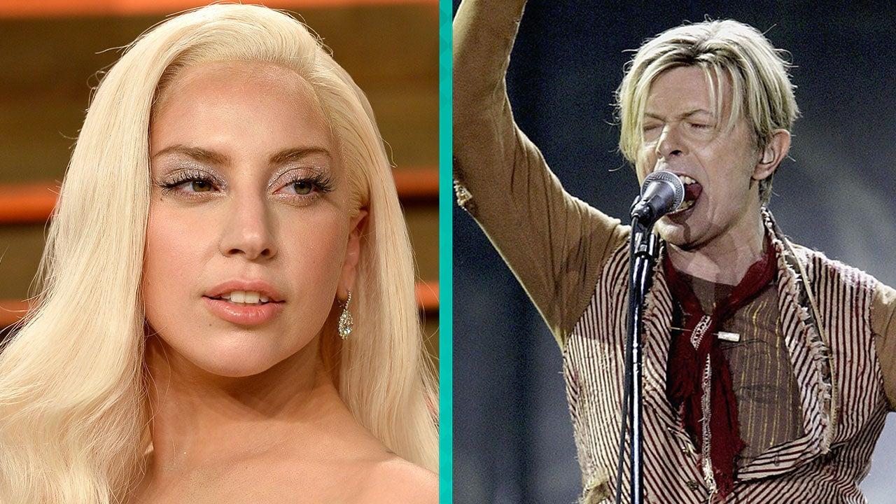 Lady Gaga Meat Dress Gif | Belgium Hotels 5 Star