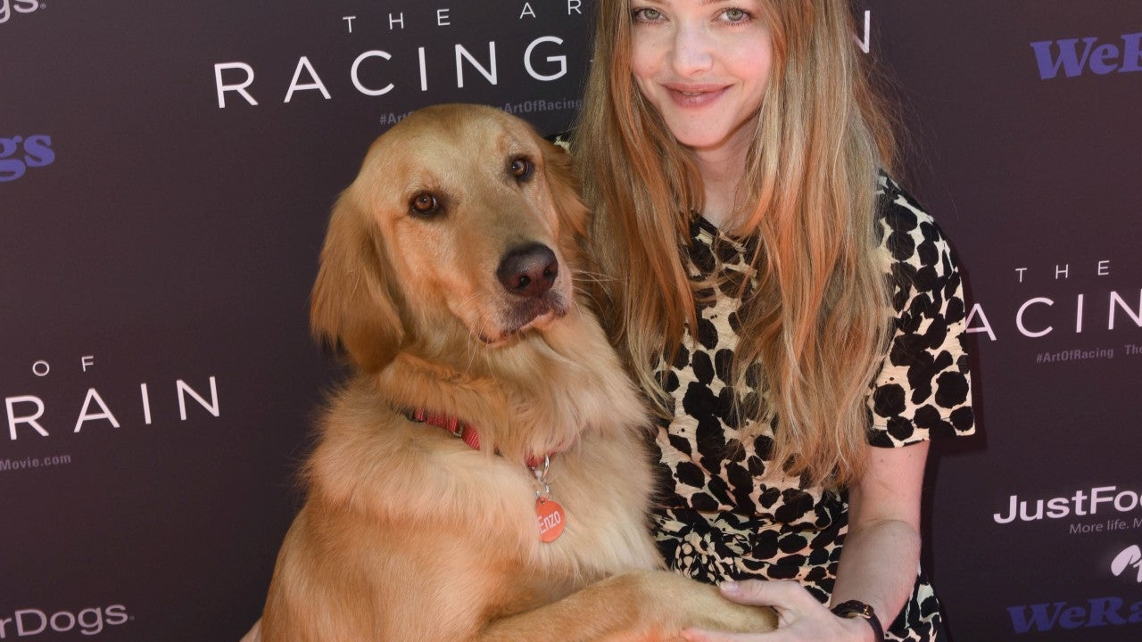 Star Sightings: Amanda Seyfried Surprises Fans With Puppy Love, Awkwafina Hosts a Pool Party & More!