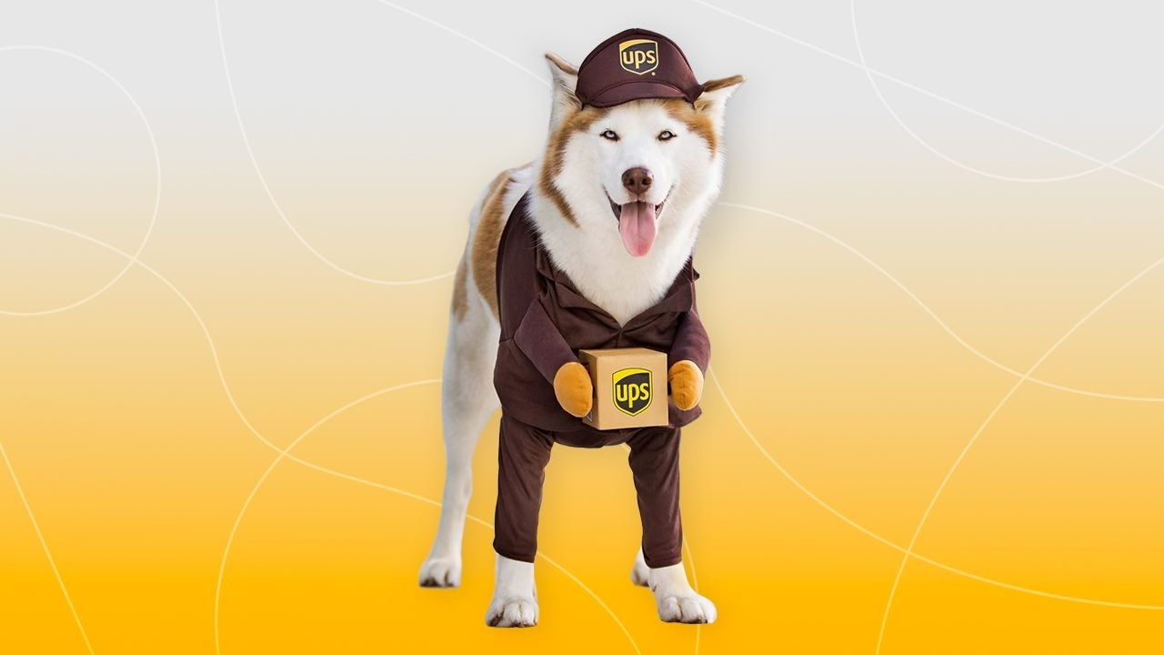 Best Dog Halloween Costumes to Buy Now (While You Still Have Time!)