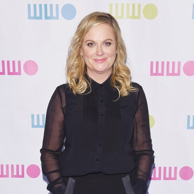 AMY_POEHLER_gettyimages-873805418.jpg