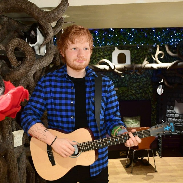 The new Madame Tussauds figure of Ed Sheeran is unveiled at Lady Dinah's Cat Emporium in London.