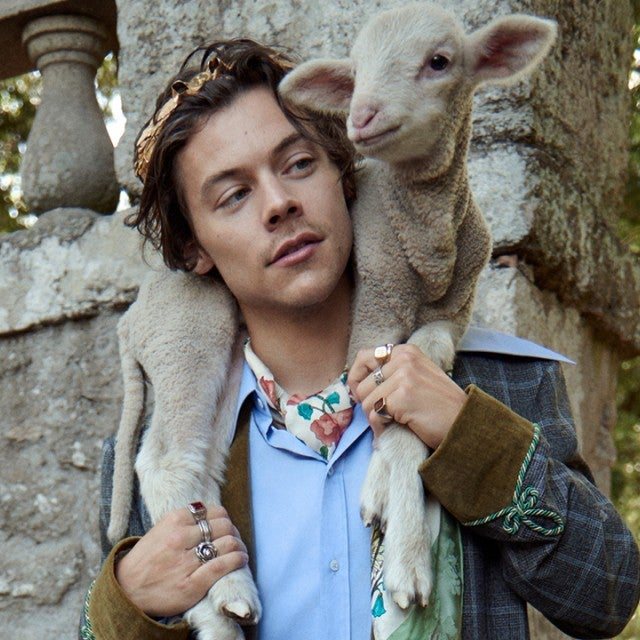 Harry Styles Gucci campaign with animals 1280