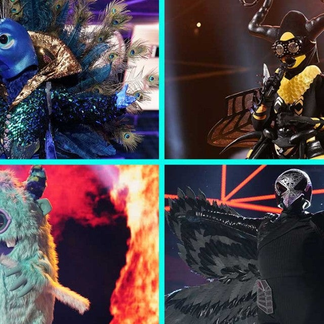The Peacock, The Bee, The Monster and The Raven on Fox's 'The Masked Singer'