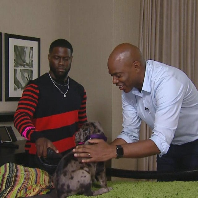Kevin Hart Gives a Puppy a Bath and it's Kind of a Disaster -- Watch!